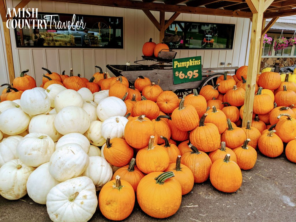Hershberger Farm & Bakery is magical during the fall!  Stop here to purchase mums and pumpkins.