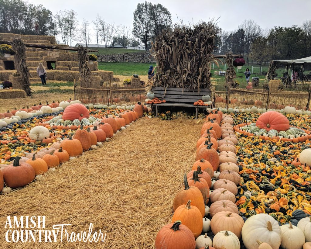 The Farm at Walnut Creek offers the most delightful fall festival.  Bring cash and be prepared for some of the most fun you'll ever have in Amish Country!